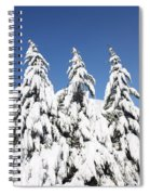 Tree-o Of Evergreens Spiral Notebook