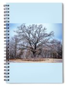 Tree Of Beauty Spiral Notebook