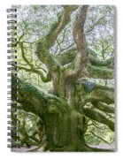 Tree Of History Spiral Notebook