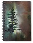 Tree Of Life         65 Spiral Notebook