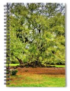 Tree Of Life 2 - Paint  Spiral Notebook