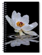 Tree Peony Reflections Spiral Notebook