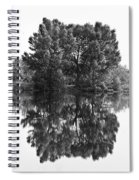 Tree Reflection In Black And White Spiral Notebook