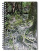 Tree Roots And Lithia Springs Spiral Notebook