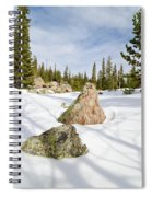 Tree Shadows On Snow Spiral Notebook
