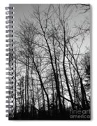 Tree Silhouette Bw Spiral Notebook