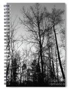 Tree Silhouette II Bw Spiral Notebook