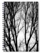 Tree Silhouettes In Black And White Spiral Notebook