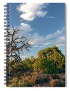Tree Sky Utah Spiral Notebook