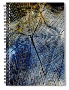 Tree Slab - 5025 Spiral Notebook