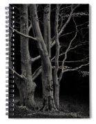 Beech Tree Spiral Notebook