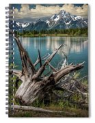 Tree Stump On The Northern Shore Of Jackson Lake At Grand Teton National Park Spiral Notebook