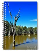 Tree Stumps In Beauty Spiral Notebook