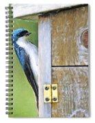 Tree Swallow At Nesting Box Spiral Notebook