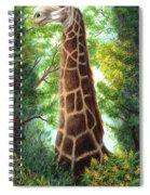 Tree Top Browser Spiral Notebook