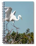 Tree Top Tip Toe Spiral Notebook