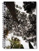 Tree Tops  Spiral Notebook