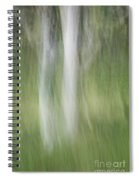 Tree Trunk Motion Spiral Notebook