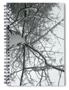 Tree Wrapped In Snow Spiral Notebook