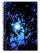 Treed Moon Spiral Notebook
