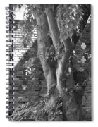 Trees And Brick Crosses Spiral Notebook