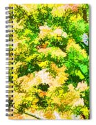 Trees And Leaves 1 Spiral Notebook
