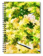 Trees And Leaves 2 Spiral Notebook