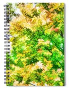 Trees And Leaves  Spiral Notebook