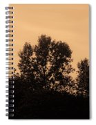 Trees And Geese In Sepia Tone Spiral Notebook