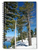 Trees And Snag At Crater Lake Spiral Notebook