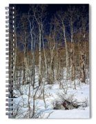 Trees And Something In The Snow Spiral Notebook