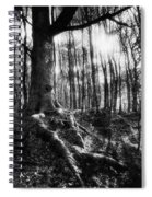 Trees At The Entrance To The Valley Of No Return Spiral Notebook
