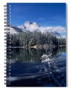 Trees At The Lakeside, Yellowstone Spiral Notebook