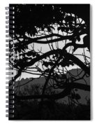 Trees Black And White - San Salvador Spiral Notebook