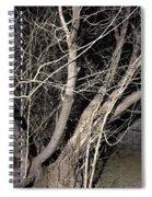 Trees Closeup Spiral Notebook