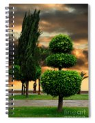 Trees In A Park Of Limassol City Sea Front In Cyprus Spiral Notebook