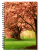 Trees In A Row Spiral Notebook