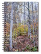 Trees In Autumn Spiral Notebook