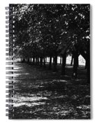 Trees In Chicago Spiral Notebook