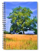 Trees In Field Spiral Notebook