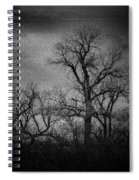Trees In Storm In Black And White Spiral Notebook
