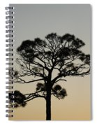 Trees In Sunset Spiral Notebook