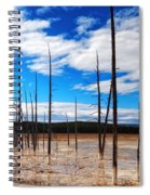 Trees In The Midway Geyser Basin Spiral Notebook