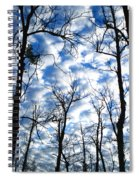 Trees In The Sky Spiral Notebook
