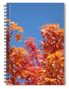 Trees Landscape Art Print Fall Tree Leaves Baslee Troutman Spiral Notebook