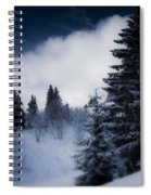 Trees Mountains And More Trees Spiral Notebook