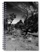 Trees Of Canyon Lands Spiral Notebook