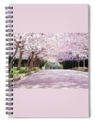 Trees Of Pink Spiral Notebook