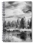Trees Of The Preserve Spiral Notebook