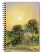Trees On Hampstead Heath At Sunset Spiral Notebook
